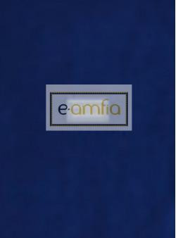 e-amfia